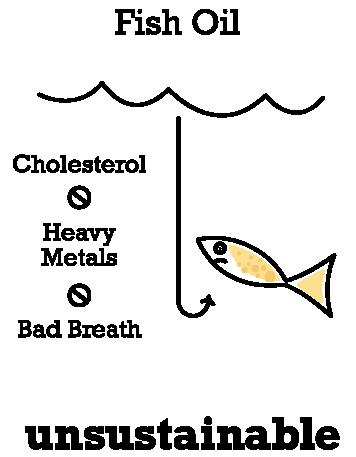 NatrixOne Fish Oil Bad