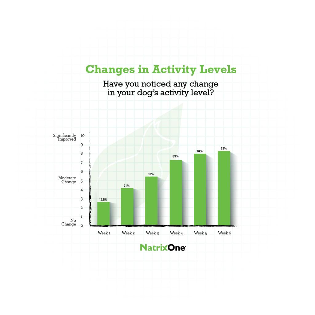 NatrixOne Case Study Activity Level