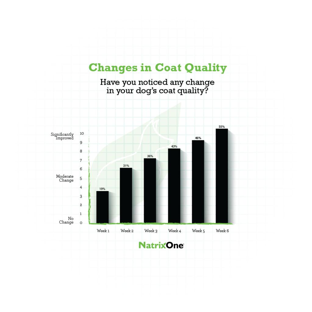 NatrixOne Case Study Coat Quality