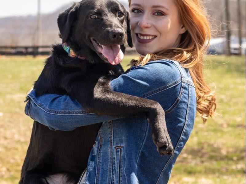 Luna Dog Testimonial